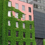 green architecture, architecture, building, plants, photo, free photo, stock photos, royalty-free image