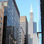 willis tower, sears tower, chicago downtown, high rise, windows, skyscraper, architecture photo, building, free stock photos, free images, royalty-free image