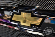 Chevy, Chevrolet logo, Chicago Auto Show, stock photos, free images, royalty free pictures