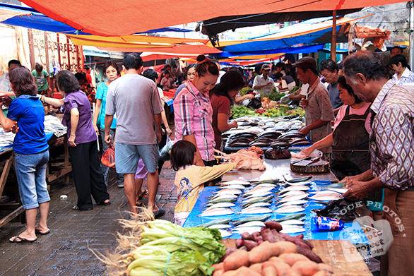 fish market, fish vendors, fish stall, seafood market, free stock photo, picture, free images download, stock photography, royalty-free image