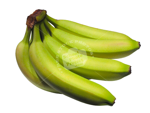 banana, fresh banana, green banana, banana photo, fruit photo, photo, stock photos, stock images, royalty-free image