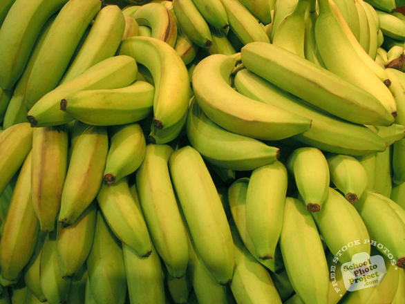green banana, banana photo, banana picture, fruit photo, free photo, free images, stock photos, stock images, royalty-free image