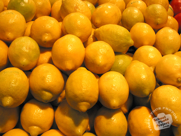 lemon, lemon photo, picture of lemons, fruit photo, free photo, free images, stock photos, stock images, royalty-free image