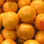 oranges, fruit, fresh fruits, fruit photos, photo, free photo, stock photos, royalty-free image