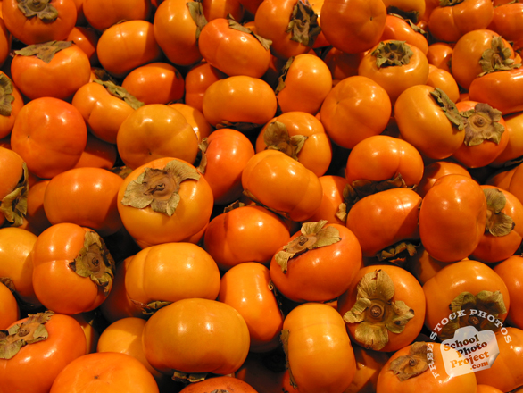 persimmon, fuyu persimmon, persimmon photo, picture of persimmons, fruit photo, free images, stock photos, stock images, royalty-free image