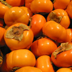 persimmon, fuyu persimmon, fruits, fresh fruit photo, free stock photo, royalty-free image