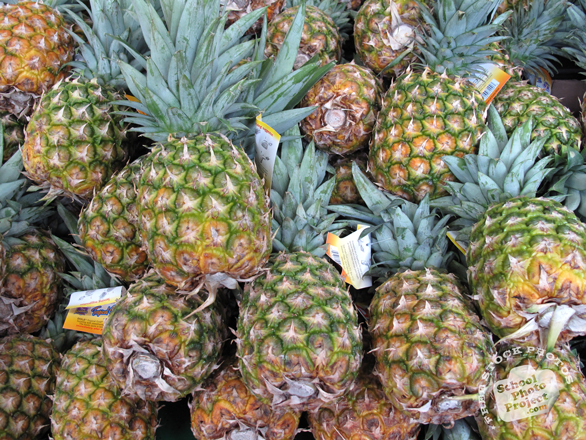 pineapple, pineapple photo, picture of pineapples, fruit photo, free images, stock photos, stock images, royalty-free image