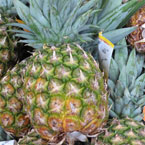 pineapple, fresh fruits, fruit photo, free stock photo, royalty-free image