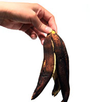 rot banana, rotten banana peel, banana skin picture, free photo, royalty-free image