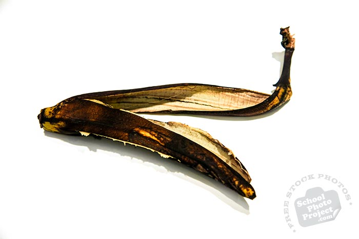 spoiled banana skin, banana peel, rotten banana peel on white background, fruit photo, free stock photo, free picture, stock photography, stock images, royalty-free image
