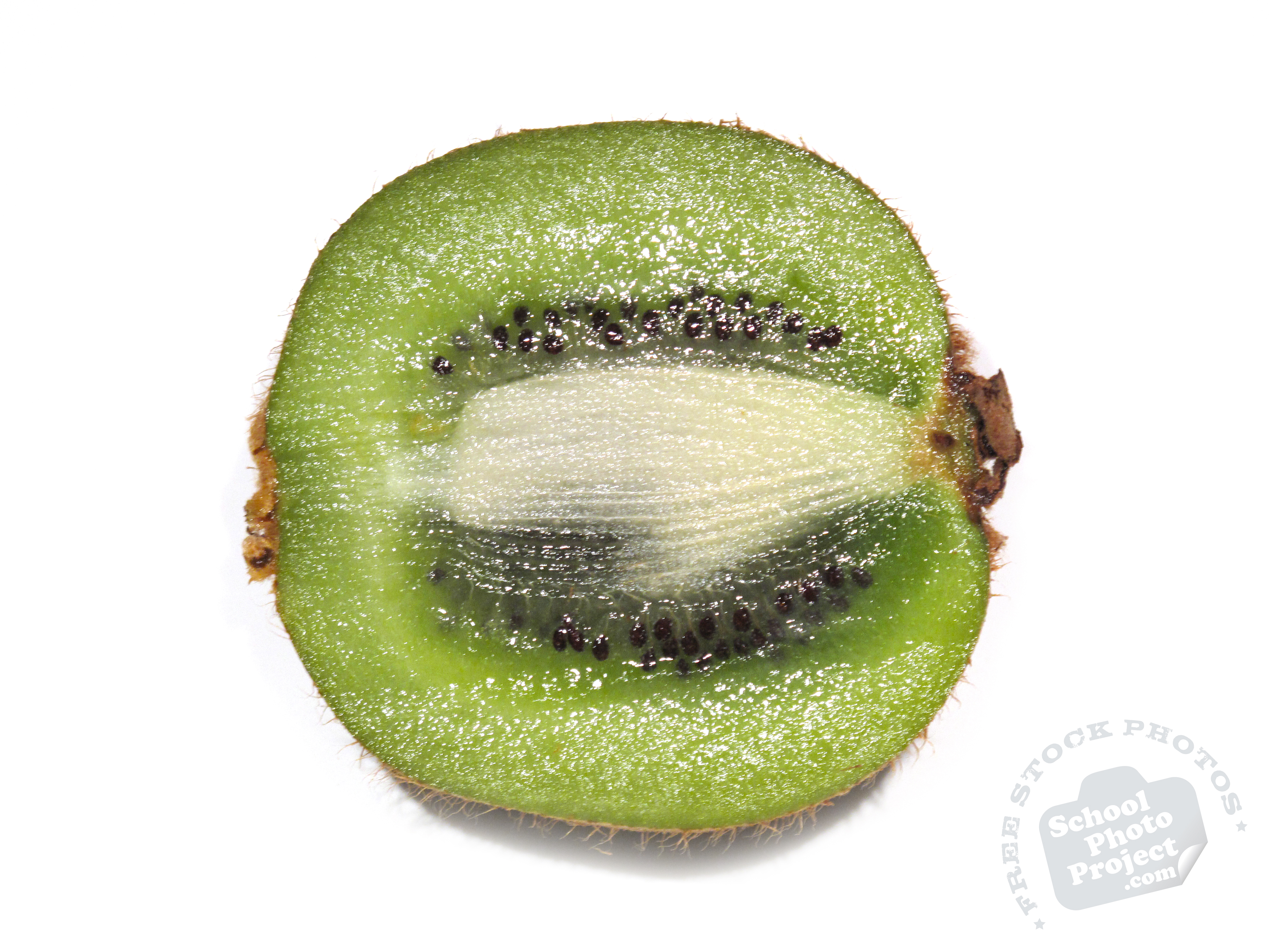 FREE Kiwifruit Photo, Cut Kiwi Fruit Picture, Royalty-Free ...
