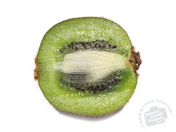 kiwi, kiwifruit, cut kiwi fruit, kiwi photo, picture of kiwi fruit, fruit photo, free images, stock photos, stock images, royalty-free image