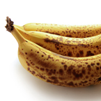 spoiled banana, rotten banana, banana photos, fruit photos, free foto, free photo, stock photos, picture, image, free images download, stock photography, stock images, royalty-free image