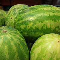 watermelons picture, free photo, royalty-free image