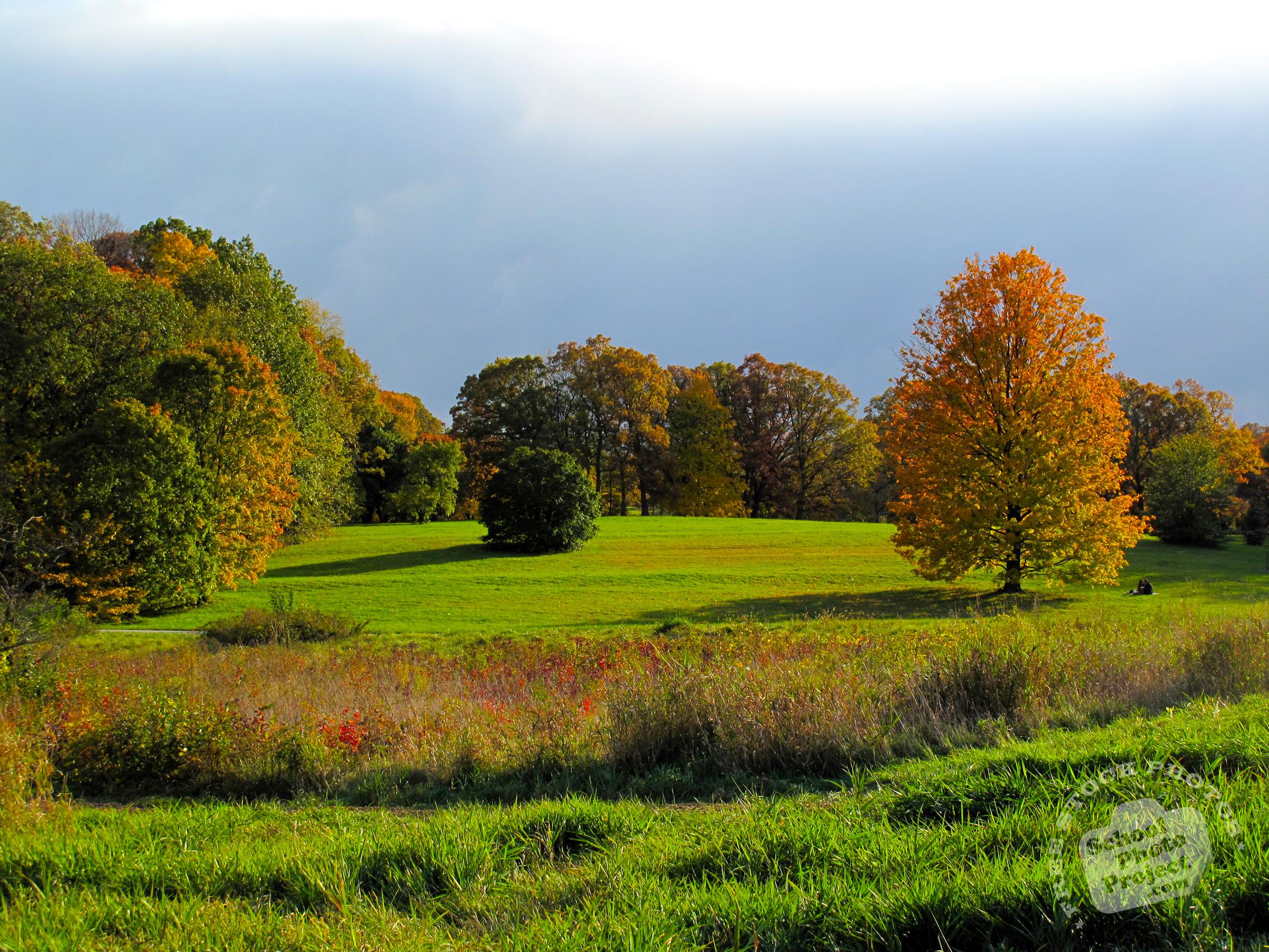 FREE Autumn Scenery Photo, Fall Foliage Picture, Beautiful Panorama ...