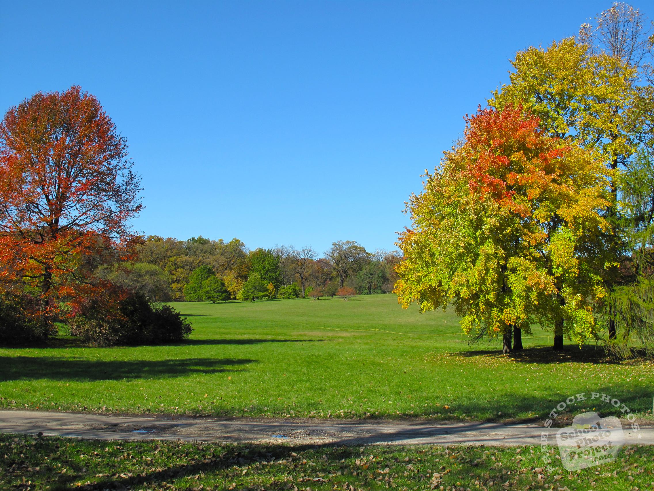 FREE Fall Foliage Photo, Colorful Trees Picture, Autumn Panorama ...