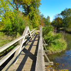 wooden bridge, creek, vegetation, sunny sky, fall season foliage, panorama, nature photo, free stock photo, free picture, stock photography, royalty-free image