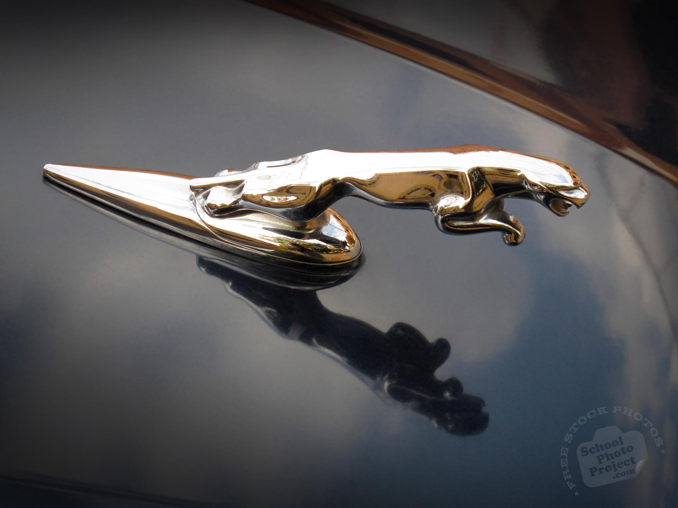 free jaguar logo jaguar mark identity famous car identity royalty