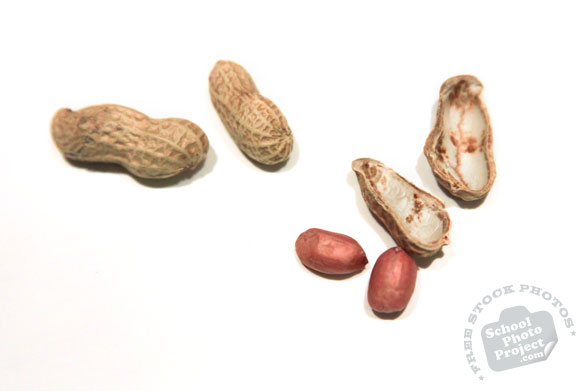 peanuts, peanut shell, nuts, free stock photo, free image, royalty-free image