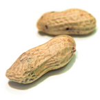roasted peanuts, peanut shell, nuts, free stock photo, free image, royalty-free image