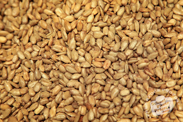 sunflower meat, sunflower seeds, nuts, free stock photo, free image, royalty-free image
