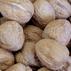 walnuts, walnut photo, nuts picture, free photo, free download, stock photos, royalty-free image