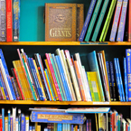 books, bookshelf, book store, library shelves, children books, daily objects, daily products, product photos, object photo, free photo, stock photos, free images, royalty-free image, stock pictures for free, free stock picture, images free download, stock photography, free stock images