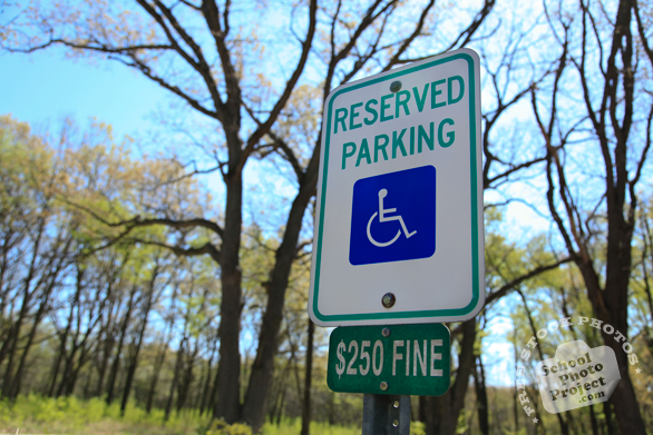 reserved parking, disabled parking space, handicap parking sign, $250 fine, daily objects, free stock photo, picture, free images download, stock photography, royalty-free image