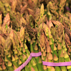 fresh asparagus, vegetable photos, veggie, free stock photo, royalty-free image
