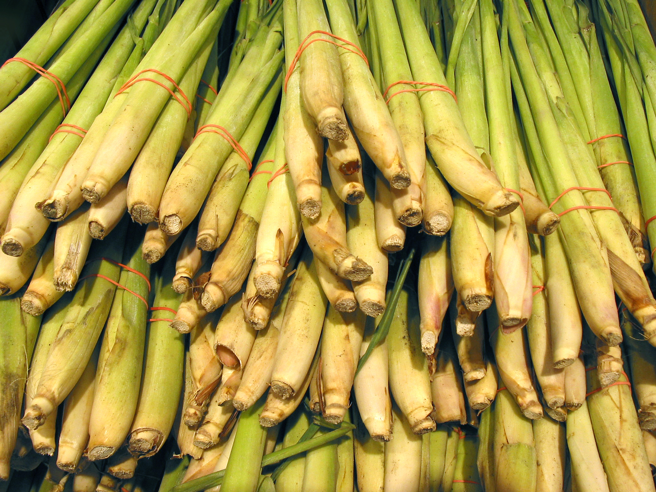 lemongrass free stock photo image picture lemongrass asian