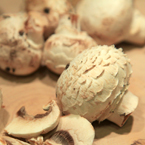 white mushroom, champignon, button mushroom, vegetable photos, veggie, free stock photo, royalty-free image