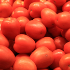 roma tomato, red tomato, berry tomato, vegetable photos, veggie, free stock photo, royalty-free image