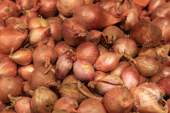 shallot onion, red onion, vegetable photos, veggie, free stock photo, royalty-free image