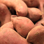 sweet potato, vegetable photos, veggie, free stock photo, royalty-free image
