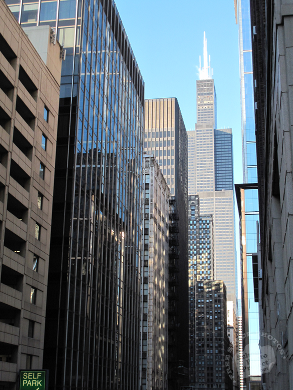 Willis Tower, Sears Tower, Chicago downtown, Chicago landmark, historic landmark, high rise, windows, skyscraper, architecture photo, building, free stock photos, free images, royalty-free image