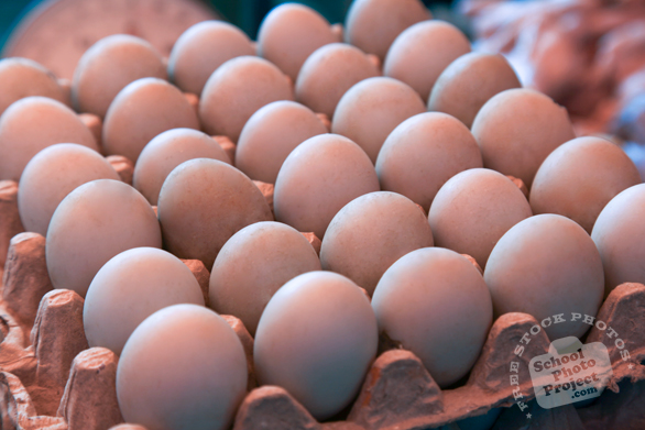 duck eggs, organic egg, poultry product, free stock photo, picture, free images download, stock photography, royalty-free image