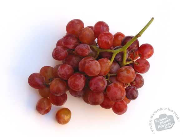 grapes, red grapes, grapes photo, grapes picture, grapes image, fruit, fruit photo, free photo, free images, stock photos, stock images, royalty-free image