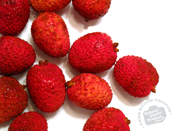 lychee, lychee photo, picture of lychees, fresh lychee, fruit photo, free images, stock photos, stock images, royalty-free image