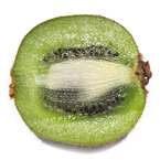 kiwi, kiwifruit, sliced kiwi, kiwi kiwi picture, kiwi image, fresh fruit photo, free stock photo, royalty-free image