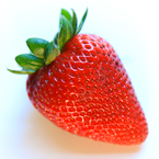 strawberry, strawberry photos, fruit photo, free stock photo, free picture, free image download, stock photography, stock images, royalty-free image