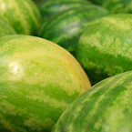 watermelons, watermelon photos, fruit photo, free stock photo, free picture, free image download, stock photography, stock images, royalty-free image