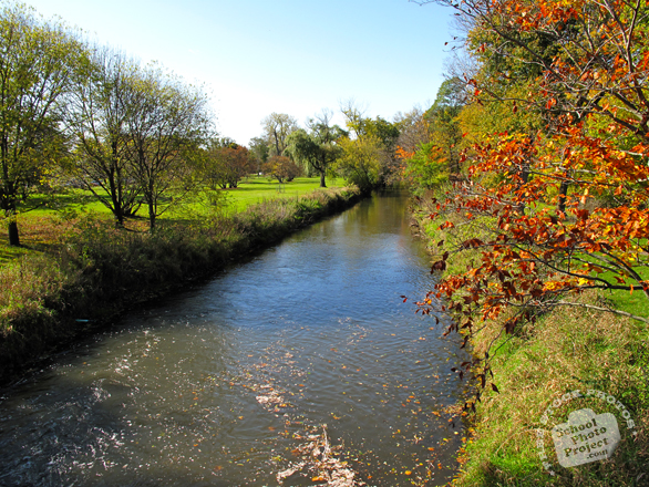 creek, river, lush trees, colorful autumn leaves, fall season foliage, panorama, nature photo, free stock photo, free picture, stock photography, royalty-free image