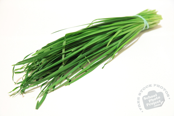 Chinese chives, vegetable, fresh veggie, vegetable photo, free stock photo, free picture, stock photography, royalty-free image, free image