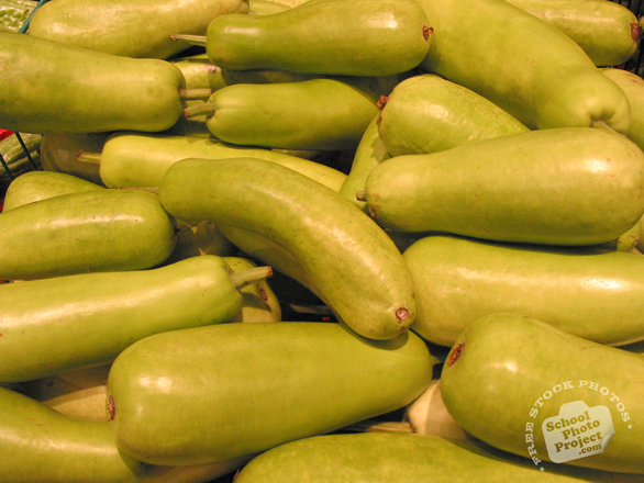 asian squash, squash, vegetable, fresh veggie, vegetable photo, free stock photo, free picture, stock photography, royalty-free image