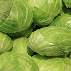 cabbage, vegetable, fresh veggie, vegetable photo, free stock photo, free picture, stock photography, royalty-free image