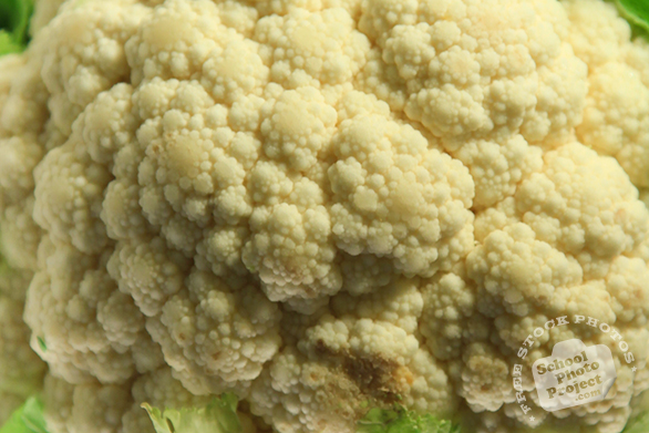 white cauliflower, cauliflower texture, vegetable, fresh veggie, vegetable photo, free stock photo, free picture, stock photography, royalty-free image