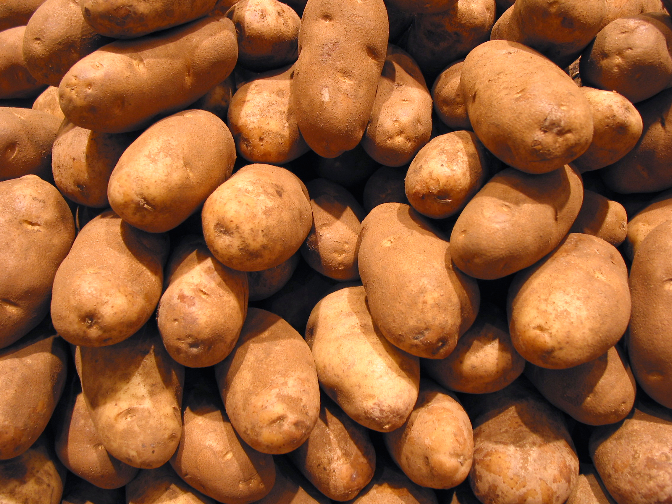 Potato, FREE Stock Photo, Image, Picture: Potatoes, Tubers ...