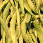 string beans, vegetable, fresh veggie, vegetable photo, free stock photo, free picture, stock photography, royalty-free image