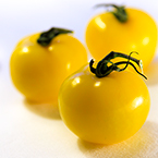 yellow tomato, fresh tomato, vegetable, fresh veggie, vegetable photo, free stock photo, free picture, stock photography, royalty-free image